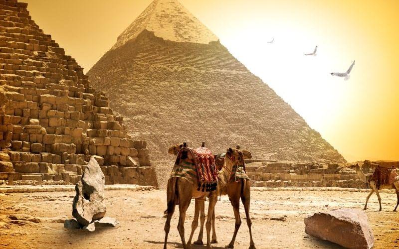¿Qué hacer en El Cairo, Egipto? ¿Busca consejos sobre qué hacer en El Cairo?