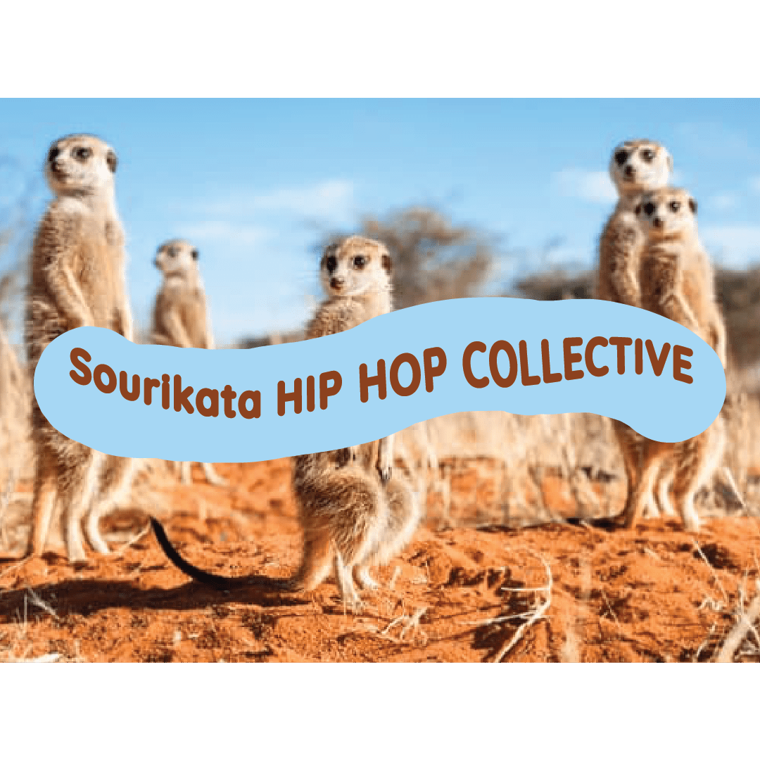 Hip Hop Collective Meet Up